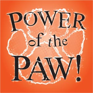 3079 - orange and white paw pow