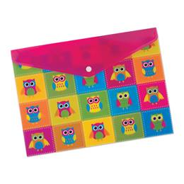 Poly Folder With Snap - Owls