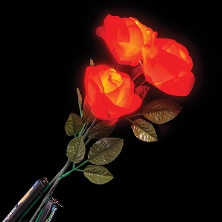 Light-up Red Roses