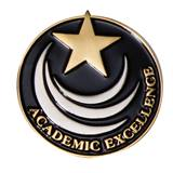Gold Star Academic Excellence Pin