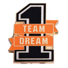 Teacher Award Pin - 1 Team 1 Dream