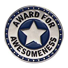 Award for Awesomeness Pin