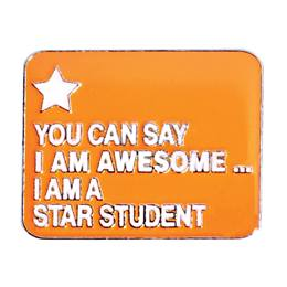 Award Pin - Awesome Star Student