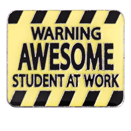 Award Magnet - Awesome Student at Work