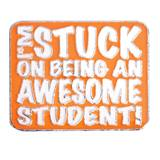 Award Magnet - Awesome Student