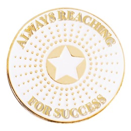 Always Reaching for Success Gold Star Burst Pin