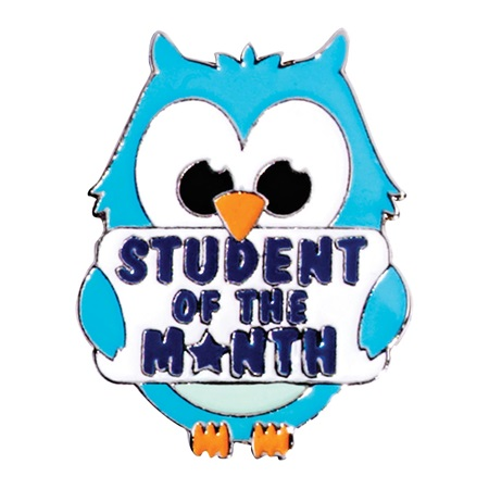 Award Pin - Student of the Month Owl