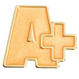 Award Pin - Gold A+