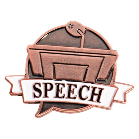 Brushed Metal Speech Pin