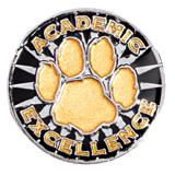 Award Pin -Academic Excellence