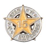 Fifteen-Year Star Employee Pin
