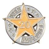 Twenty-Year Star Employee Pin