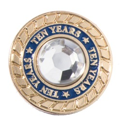 Ten Years of Service Class Ring Pin