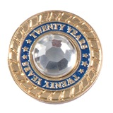 Twenty Years of Service Class Ring Pin