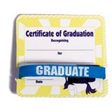 Mini Certificate/Wristband Set - Graduation Cap