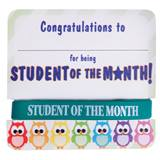 Mini Certificate/Wristband Set - Student of the Month