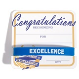 Mini Certificate/Wristband Set - Academic Excellence