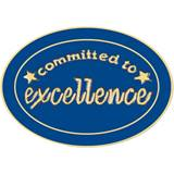 Excellence Award Pin - Committed to Excellence