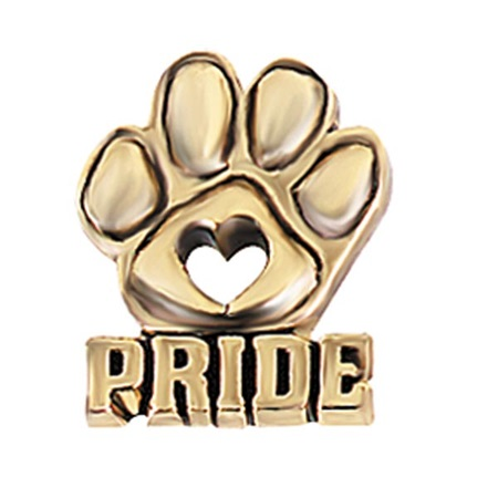 Paw Pride Award Pin - Cut Out Heart