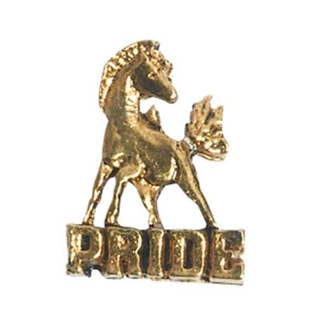 Mustang Award Pin - Gold Pride