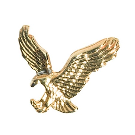 Eagle Award Pin - Gold Tone