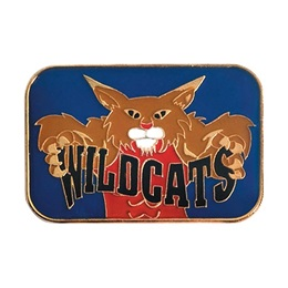 Wildcats Award Pin