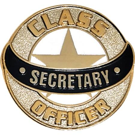 Student Council Award Pin -Class Officer Secretary
