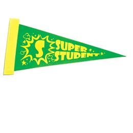 Super Student Award Pennant - Green/Yellow