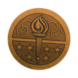 Bronze Torch Award Sticker
