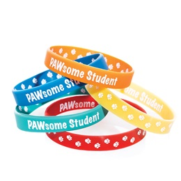 Two Way Wristband -  Pawsome Student, Assortment, 25/pkg