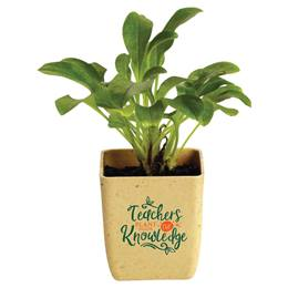 Appreciation Flower Pot - Teachers Plant Seeds of Knowledge
