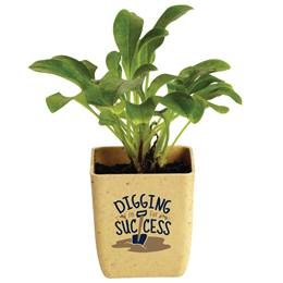 Appreciation Flower Pot - Digging in for Success
