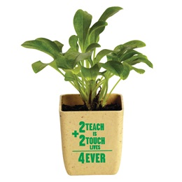 Appreciation Planter  - 2 Teach is 2 Touch Lives 4 Ever
