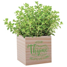 Appreciation Planter - Your Thyme Helps Us Shine
