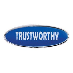 trustworthy_award_pin