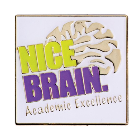 Academic Excellence Award Pin - Nice Brain