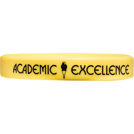 Screen Printed Silicone Wristband - Academic Excellence